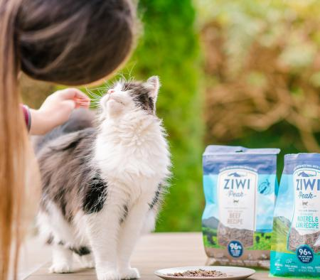 Blog post: Transitioning your Cat to ZIWI® Peak - primary image