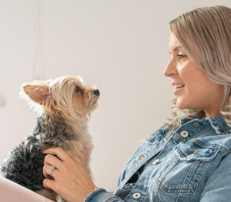 How to work from home with your pets - primary image