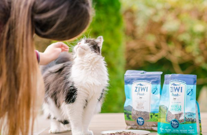 Blog post: Transitioning your Cat to Ziwi Peak - primary image