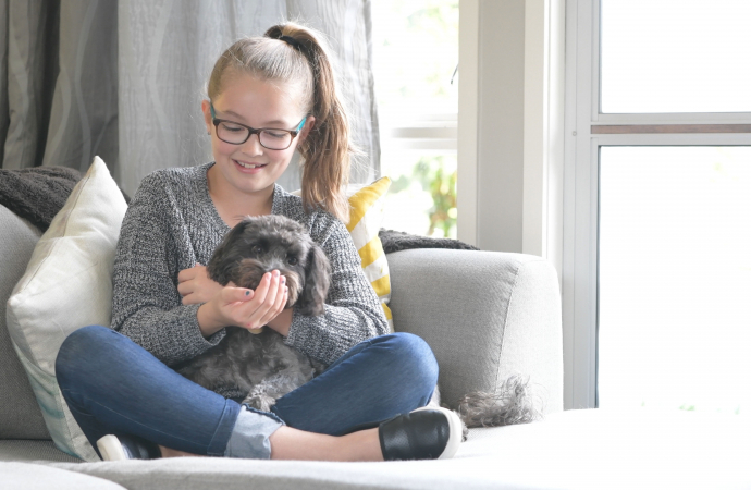 Indoor Activity Ideas To Keep Your Dog Busy - primary image