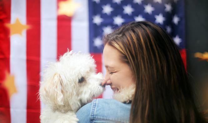 Pet Safety Tips - Fireworks - primary image